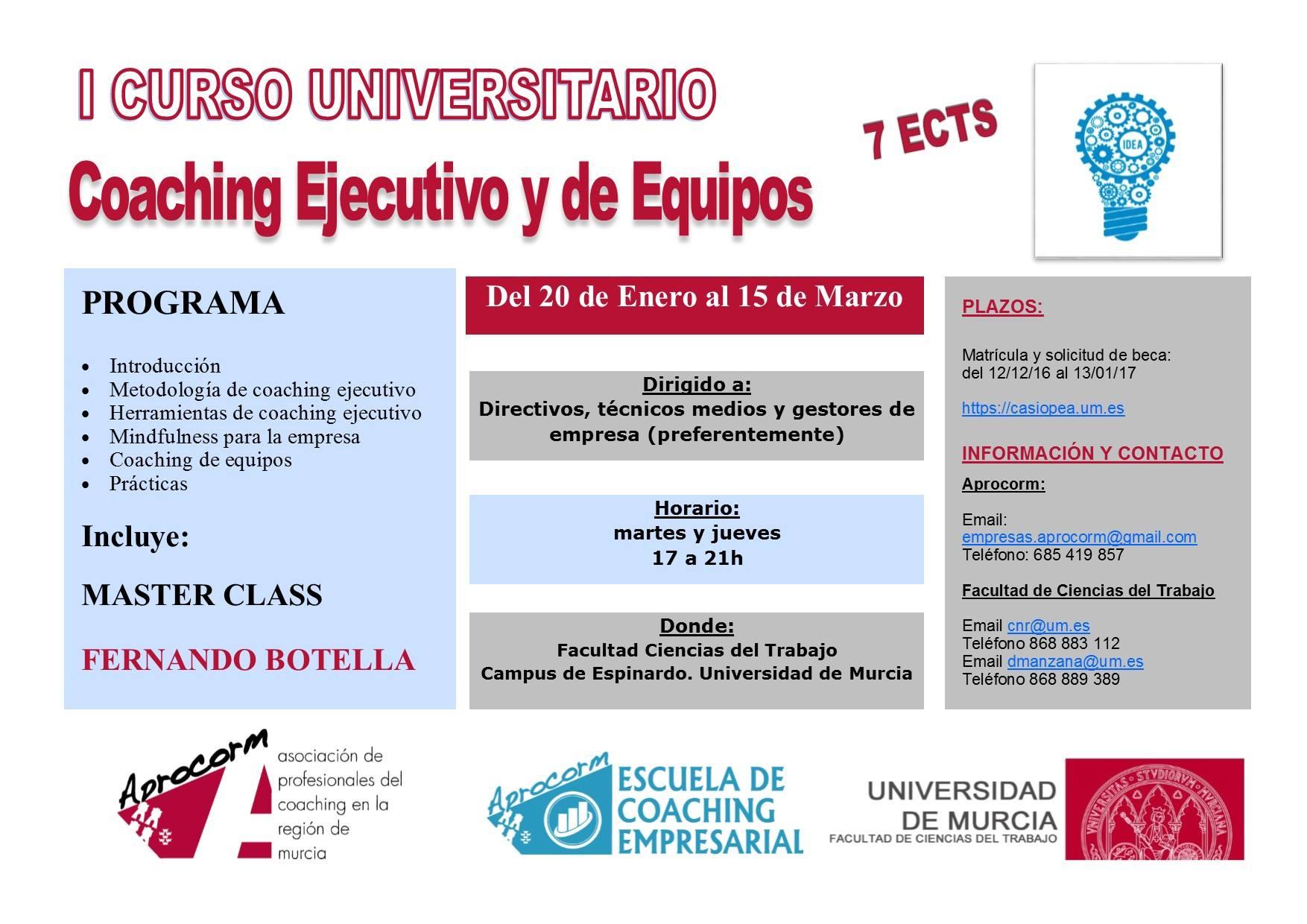 I Curso Universitario Coaching Ejecutivo